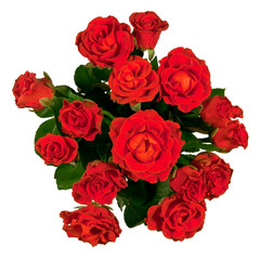 Top view of a bouquet of red roses on a white background