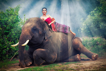 asian woman poses on elephant in the jungle