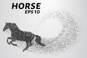 Horse of the particles. The horse is made up of little circles. Vector illustration