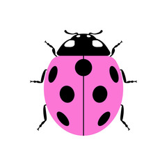 Ladybug small icon. Pink lady bug sign, isolated on white background. Wildlife animal design. Cute colorful ladybird. Insect cartoon beetle. Symbol of nature, spring or summer. Vector illustration