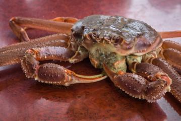 Red King Crab caught around Kamchatka Peninsula, Russia