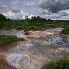 Hotsprings and mudpots between the vegetation of Uzon Caldera, Kamchatka, Russia