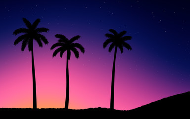 Night Sky With Stars. Palm Trees on Sunset.