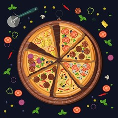 Set of pizza slices on the board and the food ingredients: cheese and tomato, mozzarella and pepperoni, pepper and basil, salami. Italian restaurant menu.