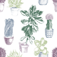 Hand drawn pattern with cactuses and succulents