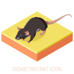 Isometric rat icon on a square ground