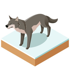 Isometric wolf icon with a square ground