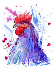 Postcard with rooster and blotch.Sketch.Symbol of the new year 2017.Watercolor hand drawn illustration.White background.