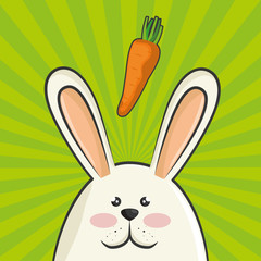 cute rabbit animal with orange carrots vegetable. colorful design. vector illustration
