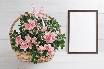 Photo sur Plexiglas Azalea Azalea flowers in basket and motivational frame