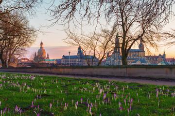 Dresden Frühling Sonnenuntergang