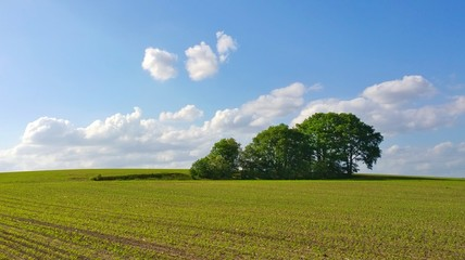 Idyllic View Of Field Against Sky