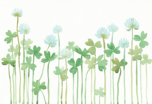 Watercolor illustration of white clover.