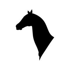 Horse head black silhouette