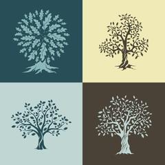 Beautiful oak trees silhouette