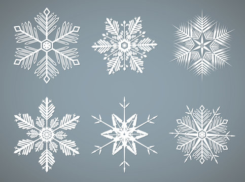 Vector snowflakes shapes