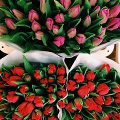 Full Frame Shot Of Rose Buds For Sale In Market