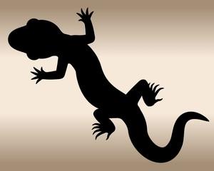 Lizard. The black silhouette of a reptile.