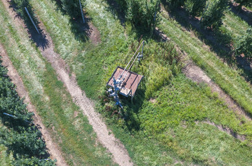The well in the apple orchard, top view.