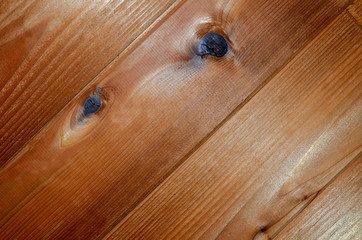 Beautiful cedar siding or floor for abstract textured background or backdrop.  Natural shine wood with knots and pattern.