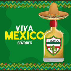 viva mexico tequila hat graphic vector illustration eps 10