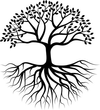 Tree silhouette with root