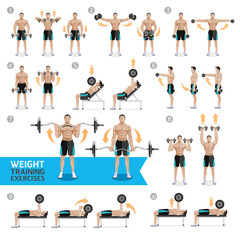 Dumbbell Exercises and Workouts WEIGHT TRAINING. Vector Illustra