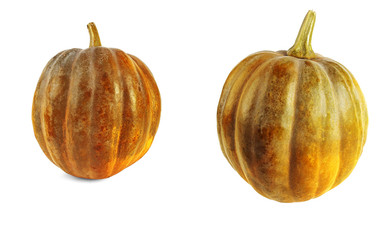 Two pumpkins with shadows on a white background