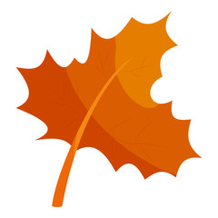 Autumn leave icon in cartoon style isolated on white background. Plant symbol vector illustration