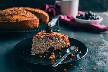 Homemade chocolate and berries sponge cake