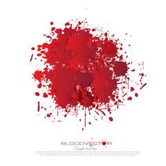 Blood splatter isolated on white background, vector design