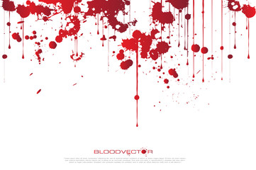 Abstract Blood splatter isolated on White background, vector des