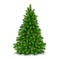 Fototapeta Christmas tree, detailed vector illustration obraz