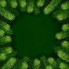 Frame of detailed Christmas tree branches on isolated background