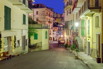 Manarola. Old street at night.