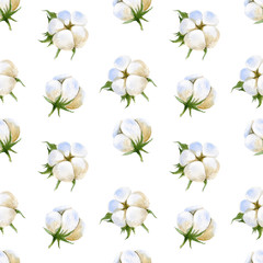seamless pattern with cotton plant on white background