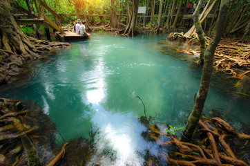 Emerald Pool is unseen pool in mangrove forest at Krabi in Thail