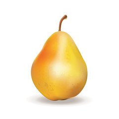 Pear. Vector illustration. 3D