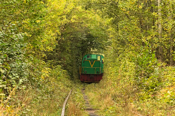 Old locomotive leaves from the trees. Tunnel of love - wonderful place created by nature