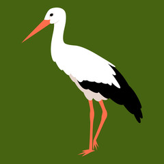 Stork vector illustration style Flat