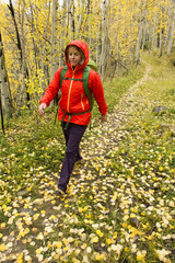 A woman hiking  in the fall in Uncompaghre National Forest, Ouray, Colorado.