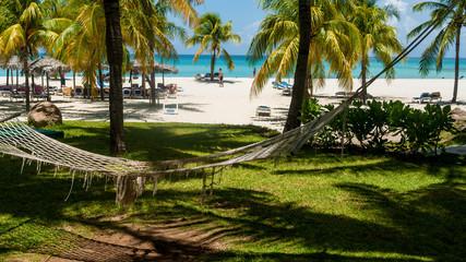 Hamaca bajo las palmeras de una playa de arena blanca en Cuba