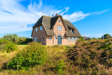 Wall Mural - Traditional red brick house with thatched roof on meadow near Wenningsted village on Sylt island, Germany