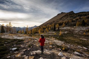 A young man walks in an alpine region alongside the colorful larch trees and steep mountains of the Cascades in the Pasayten Wilderness in Washington.