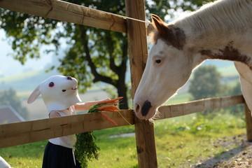 Liebe geht durch den Magen, kleines Kind mit Kaninchenmaske füttert geschecktes Pferd mit Möhren