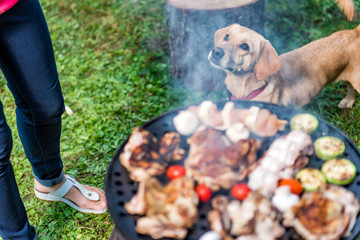 Dog standing close to barbecue