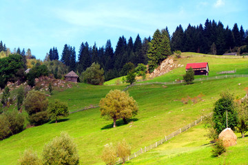 Summer landscape with rural traditional house from Transylvania
