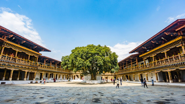 The hardscape plaza with the terrace building background with Bhutan temple in Asia, Punakha,Bhutan