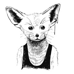 Fototapete - Hand drawn dressed up fennec in hipster style