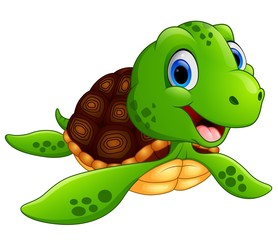 Happy turtle cartoon